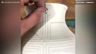 Artista de cerâmica usa técnica incrível de pintura