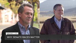 Why Senate races matter