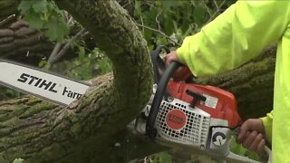 Cleanup begins following Tuesday night's storms