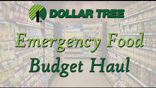 Budget Prepper Pantry Haul from Dollar Tree
