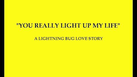 You Really Light Up My Life