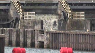 Lake Okeechobee releases resume into St. Lucie Estuary