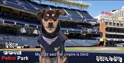 The Umpire is blind