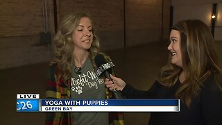 Yoga with puppies at Gather on Broadway