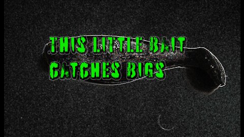 This Little Bait Catches Bigs Where They Shouldn't Be.
