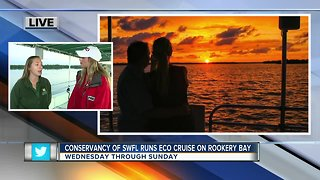 Conservancy of Southwest Florida runs eco-cruises out of Rookery Bay - 7am live report