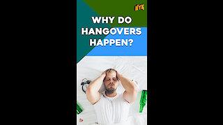 Why Do Hangovers Happen? *