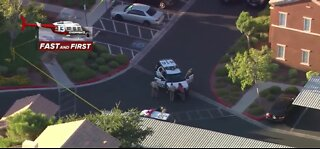 Police activity near Hualapai and Alexander
