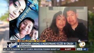 4 family members hit and killed by car on Escondido street