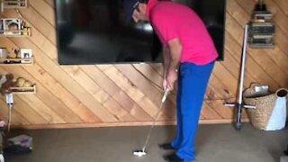 Man pulls amazing mini golf trick shots at home