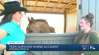 Teen survives horse accident after being stepped on