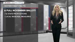 You Decide: Voter Fast Facts