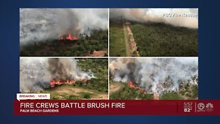 Palm Beach Gardens brushfire now 40% contained