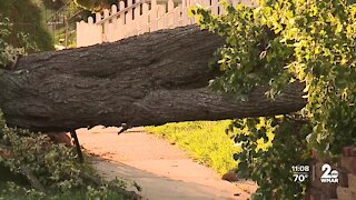 Crews working to restore power, clear damage caused by Monday night's storms