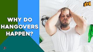 Why Do Hangovers Happen?