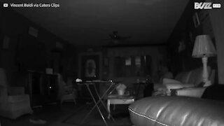 Une caméra de surveillance filme une étrange lumière dans son salon