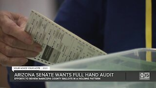 Arizona senate wants full hand audit