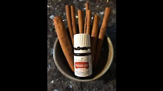 Cinnamon Bark Helps With Your Appetite