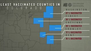 Elbert County among top counties with lowest vaccination rates