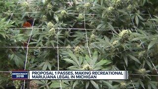Proposal 1 passes in Michigan legalizing recreational marijuana