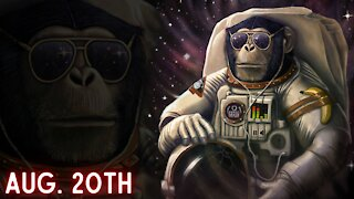 Ep. 47 Ape Nation Friday: AMC, GameStop & Crypto || Dumb Money w/ Matt