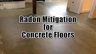 ☢️ Radon Mitigation