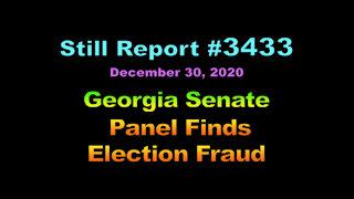 Georgia Senate Panel Finds Election Fraud, 3433