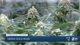 Green Gold Rush: The debate over recreational marijuana in Oklahoma
