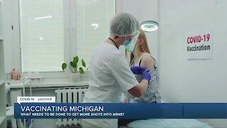 Vaccinating Michigan