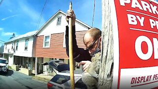 Police rescue squirrel trapped inside a metal pole