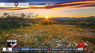 Beautiful sunset around Kern County