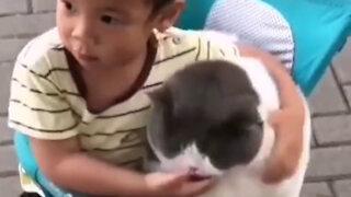 Love between boy and cat
