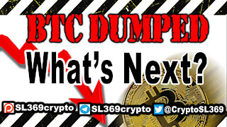 Video 13: Bitcoin dumped! What's next? Predictions for 2021