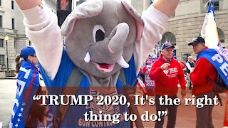 Americans Say! TRUMP 2020 It's The Right Thing To Do   Washington DC   2020-12-12