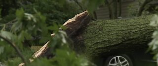 Metro Detroit hit hard by severe storms