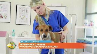 Pet Talk Tuesday – Veterinary careers