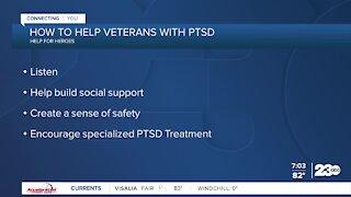 Veterans struggle with mental health