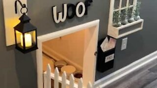 Owner builds the coolest dog house