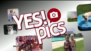 Yes! Pics - 8/10/20