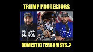 Trump Protestors Domestic Terrorists?
