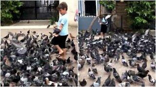 Porto Rico: ecco il guru incantatore di piccioni!