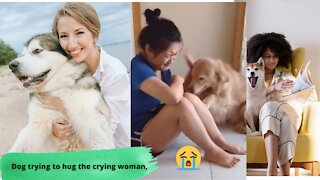 Dog trying to hug the crying woman, Dogs & Puppies
