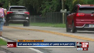 Driver wanted in deadly Plant City hit-and-run crash
