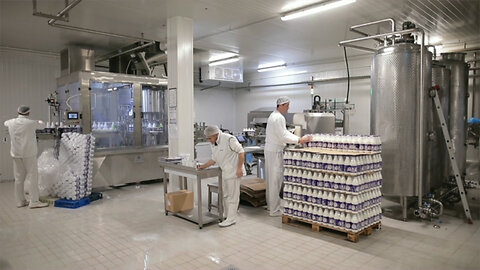 Borden Dairy Company Files for Bankruptcy