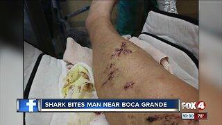 Shark bites man near Boca Grande