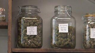 Jackpot Marijuana Dispensary