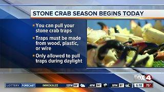 Stone crab season officially begins