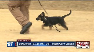 Community rallies for future puppy officer