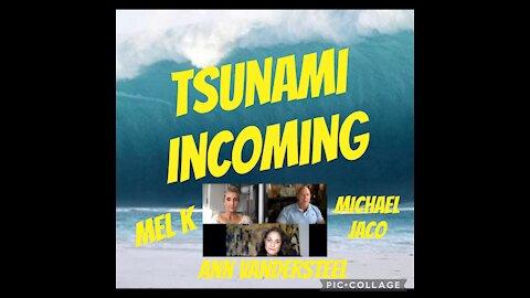 MICHAEL JACO, Ann & Mel K situation report.