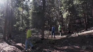 Finding Suzanne Morphew: Family beings five-day search in Chaffee County